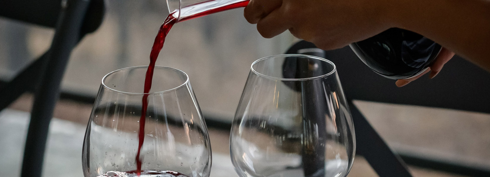 Wein und Schnaps verkostung