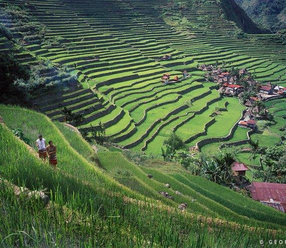Reis Terassen