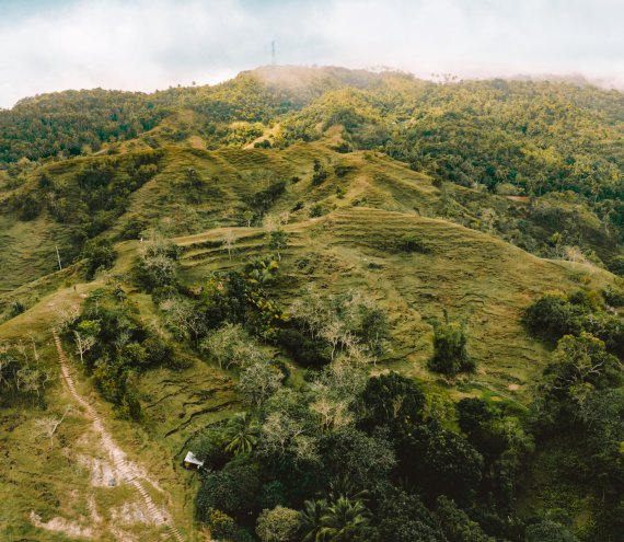 Mt Bandilaan Nationalpark
